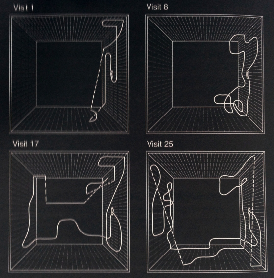 Seeley diagram